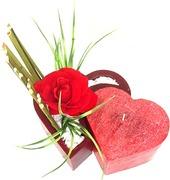 Arranjos Florais em Vasos de Parafina Perfumada