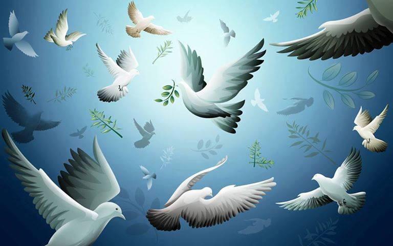 ..Paz Universal !!!