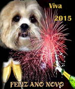 Feliz, Luminoso e Abençoado 2015 a todos