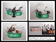 Orange is the new Black!