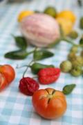 Secret Garden Club: med veg growing and lunch by Msmarmitelover