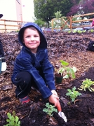 Family Food Wisdom with our First Nations Elders and Garden Workparty!