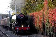 "60103 ""Flying Scotsman"" at Harringay Station"