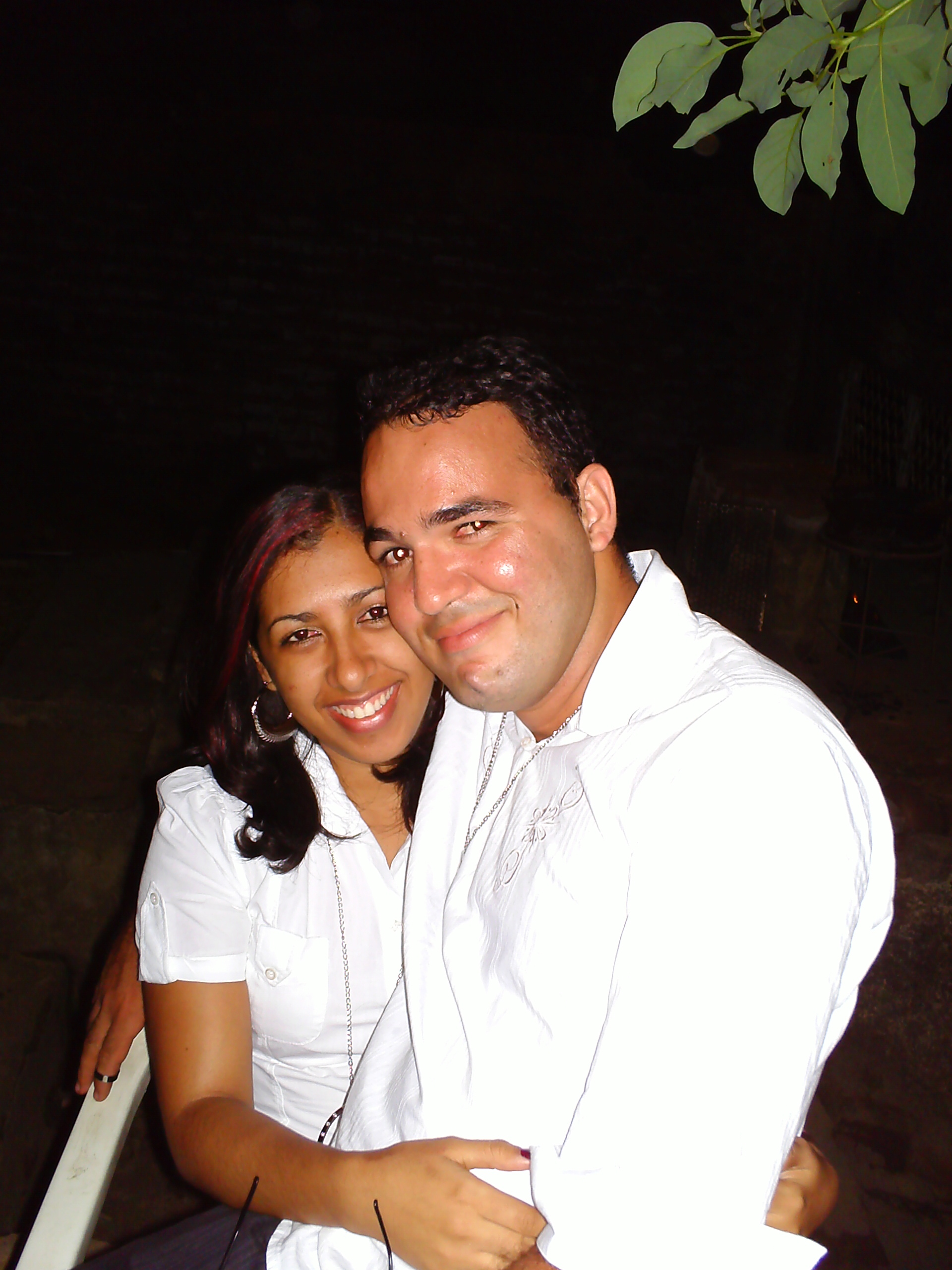 Reveion 2008