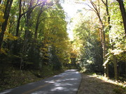 River Road in the Fall