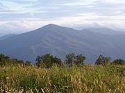 Mt. Sterling