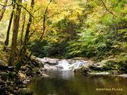West Prong Little River Cascade