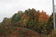 Autumn color Scott County