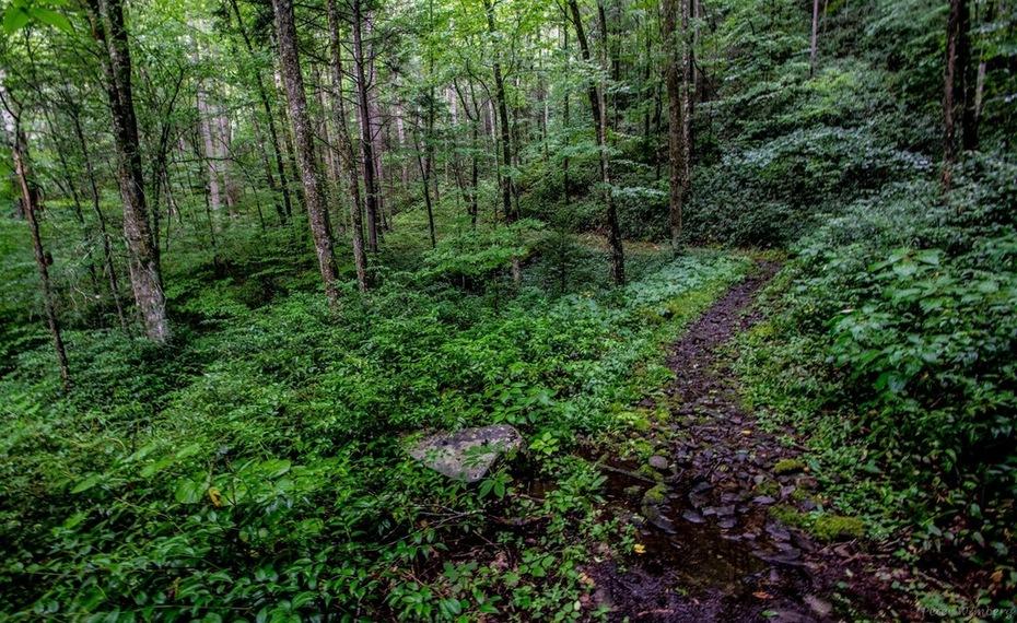 Deep Creek Trail August 9 2018
