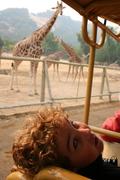 Safari West summer '08