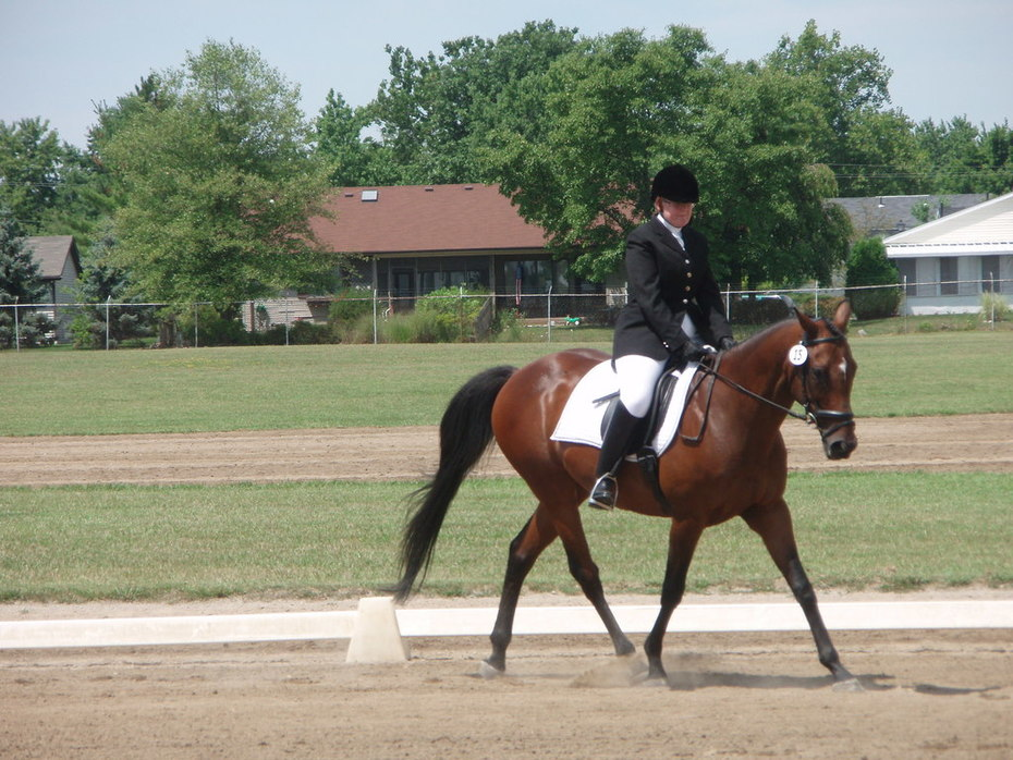 New Vocations Charity Horse Show 07040