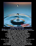 INVATA DE LA APA/LEARN FROM WATER(Capitolul 8 din Lao Tzu)