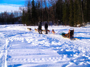 """Fred """"The Musher"""""""