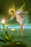 BLESSINGSANGELLIGHTINGLILIES