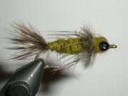 Bead-eyed Sparrow Nymph
