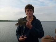 Leech Lake bluegill