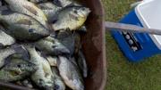 lake seminole trip 2