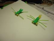 "Fun tying ""big-eye"" Copper-Head bugs"