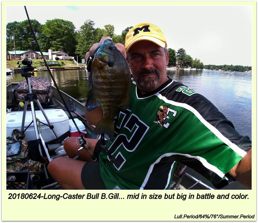 20180624-Long-Caster Bull B.Gill
