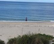 Fishing Gulf of Mexico ,Manasota Key beach 1st time