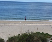Fishing Gulf of Mexico ,Manasota Key beach 1st time