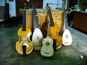 Several plucked and bowed instruments