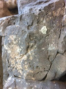 Moss/lava rock