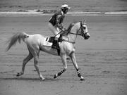 Día de caballos