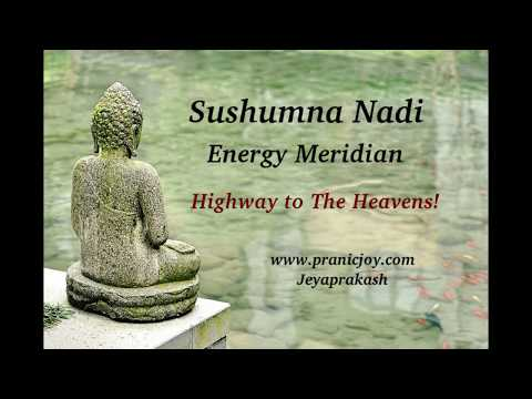 Sushumna - Highway To The Heavens! ~ A Yogic Secret