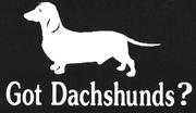 Got dashounds
