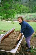 Worm farm, Bridge Creek Gardens, Maleny