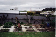 Vege garden 2004