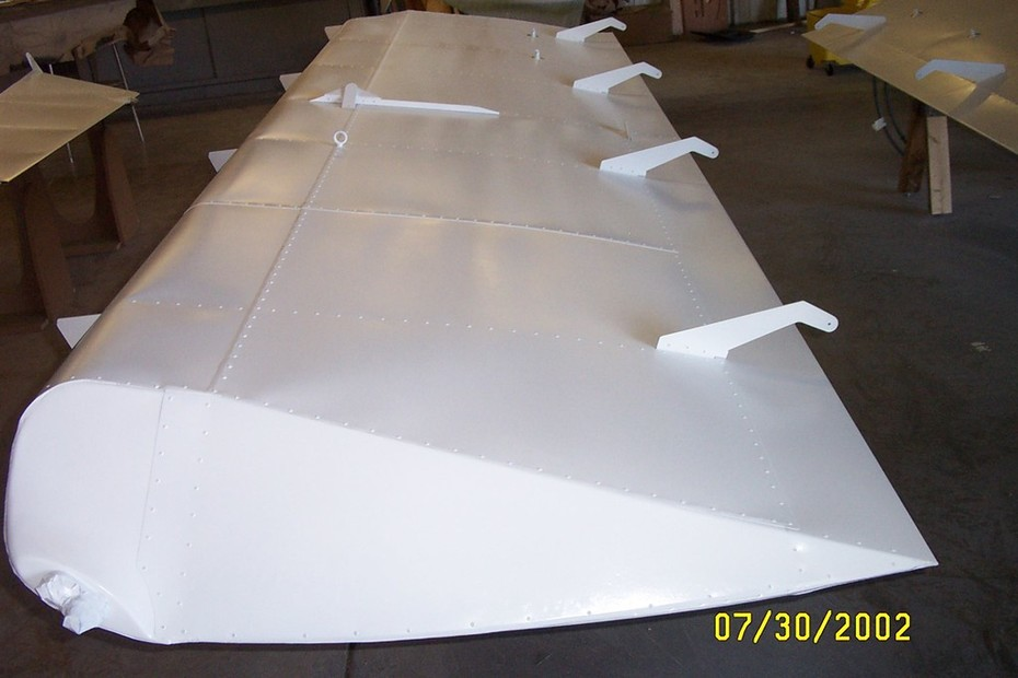 wings-paint end view of main wing