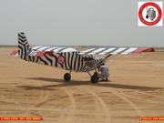 VONs CH-701 SKY JEEP ZEBRA