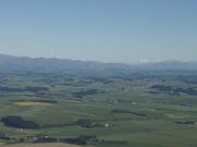 South Canterbury plains.