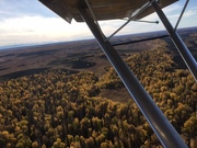 Out Flying, Colors are Awesome