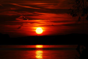 Red is beautiful.....Wannsee....Βερολίνο...