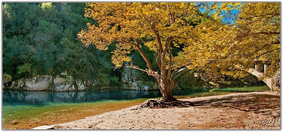 autumn colors_1