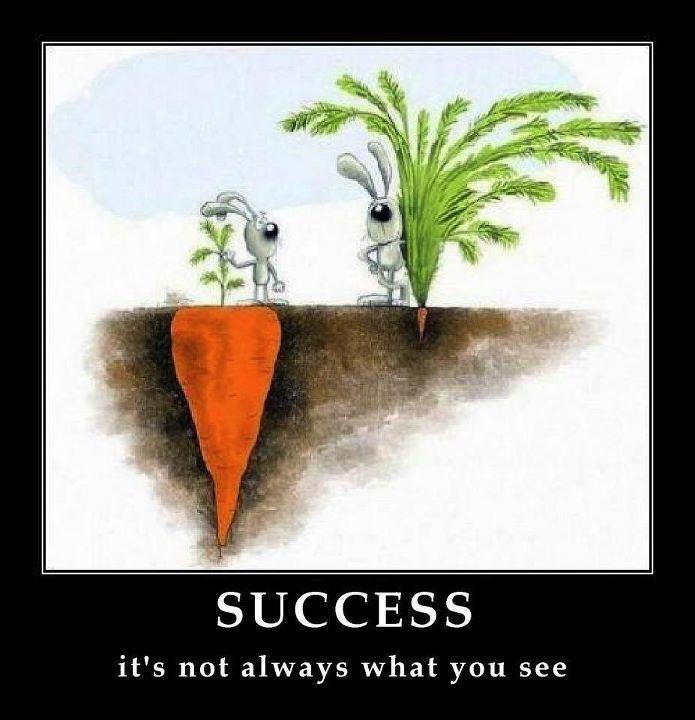 success...not always what you see