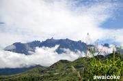 劉富威: 沙巴神山 Mt Kinabalu 05
