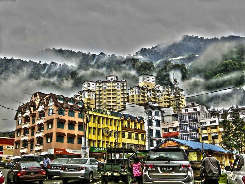 Agnes Chong: 金馬崙高原