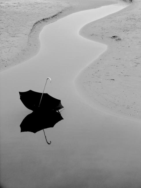 tihomir trichkov: Umbrellas in Black and White