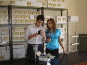 Solar Solution Paraguay - Owner