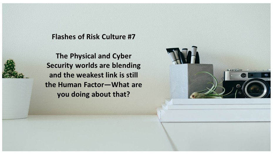 Flashes of Risk Culture 7