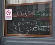Waitdres Wanted !Urgent!