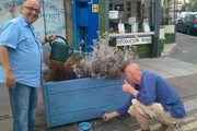 Working on the planters in myddleton road.