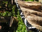 Perlenkette gehäkelt