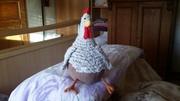 Gute Laune Huhn
