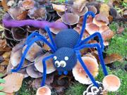 Arachno Lana