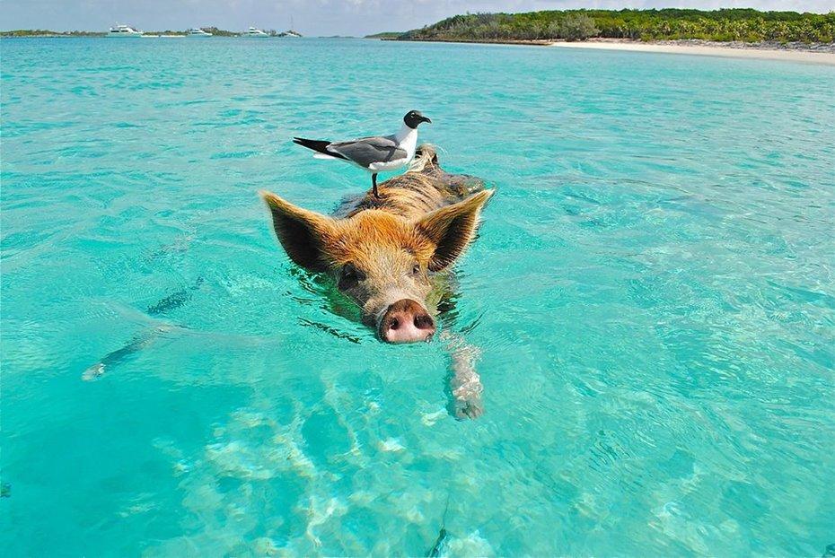 Urlaubsbekanntschaften